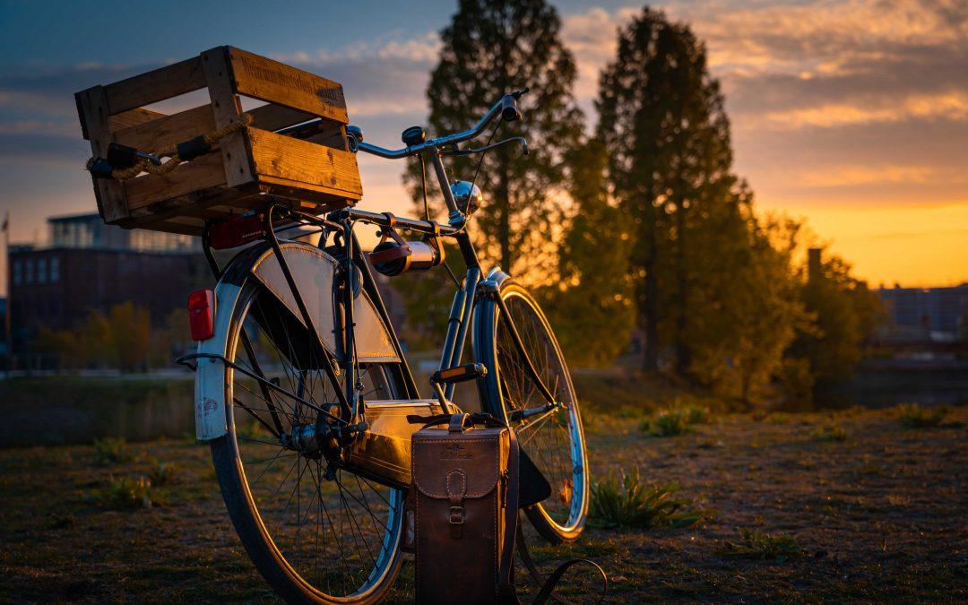 Hätte, hätte,  Fahrradkette  …